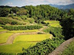 Hike n See Fukuoka and Kysuhu