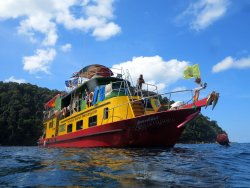 Andaman Snorkel Discovery
