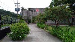 Crescent Phoenix (Sanyi Store)