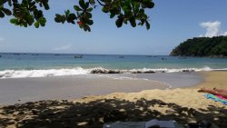 Castara Beach