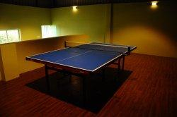 Indoor play area - Table Tennis court
