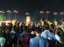 Elephants alongside Temple performers - every April