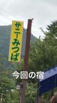 Sunny Mitsuba