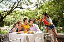 Park Ornitologiczny Jurong