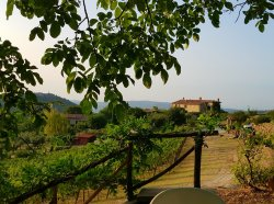 A little bit of paradise in Tuscany