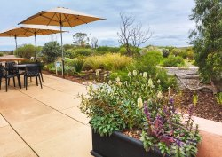 Arid Lands Botanic Garden Cafe