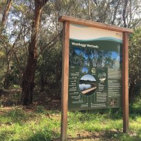 Wonthaggi Wetlands Reserve