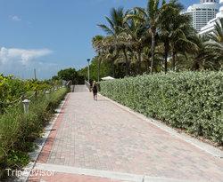Beach at the Nobu Hotel Miami Beach