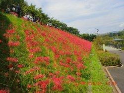 Minamiashigara Sports Park