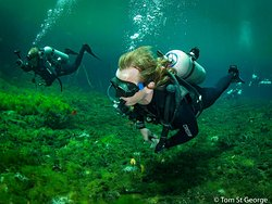 Infinity 2 Diving
