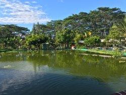 Hobby Garden Hawaii