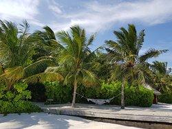 Amazing honeymoon in paradise!