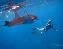 Lembongan Snorkeling Trips