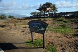 Kealia Coastal Boardwalk