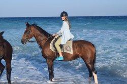 Kadmos Horse Riding Club
