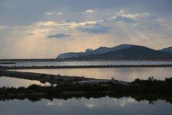 Parque Natural de Ses Salines