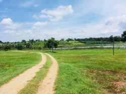 Kabini Lake View Resort