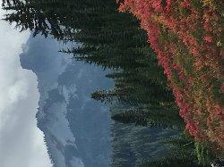 Beautiful Paradise Valley