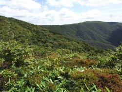 Hibayama Mountain Range