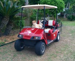 Isle of Palms Golf Carts