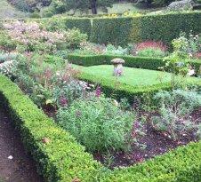Mottistone Gardens