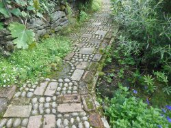 Lovely winding paths
