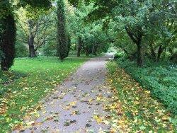 Meilahden Arboretum