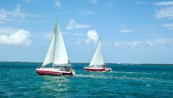 Captain Bryan's Sail and Snorkel Tours
