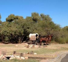 Trail Horse Adventures