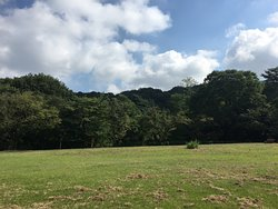 Sakuragaoka Park