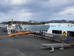 Pleasure Boat at Lake Shinji- The Hakucho