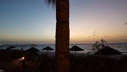 Our view at Bay Bistro - beach, palm tree and sunset