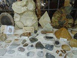 Stenelux mineralen en fossielen