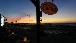 Cactus Beach Bar