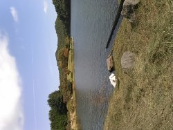 湖のほとりと湖上の散策