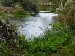 Ouse Valley Park