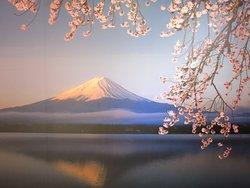 Fujisan World Heritage Center(Mt.Fuji World Heritage Center)