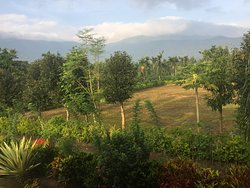 Excellent Homestay