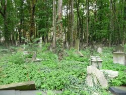 Judischer Friedhof Prenzlauer Berg