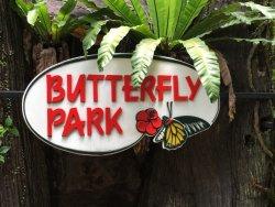 สวนผีเสื้อและอาณาจักรแมลง