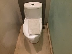 Poorly maintained, dirty toilet and worse customer service