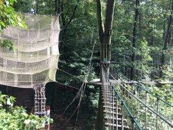 Wald-Abenteuer der Waldkletterpark