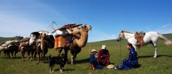 Gobi Attraction Tours & Guesthouse
