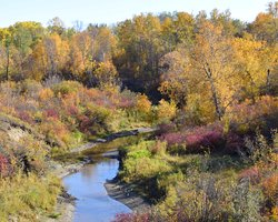 Beaver Creek Conservation Area
