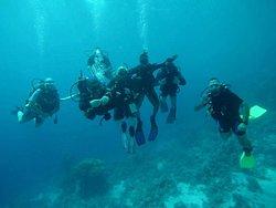 Eagle Divers