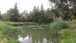 Lago di Fie...
