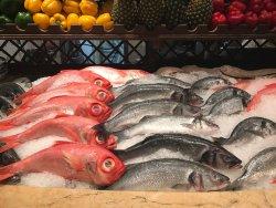 Exquisito pescado fresco