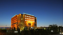 Hotel Aleksandar Palace & SPA