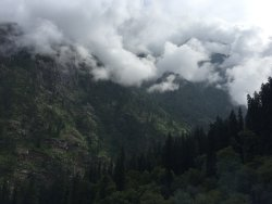 The most amazing place to stay in Kasol
