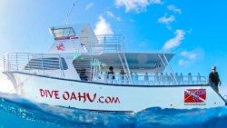 Dive Oahu